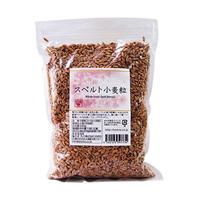 スペルト小麦粒